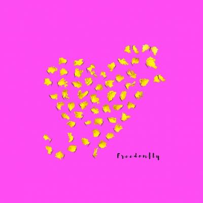 FREEDOMFLY - Eine kurze Geschichte der Freiheit